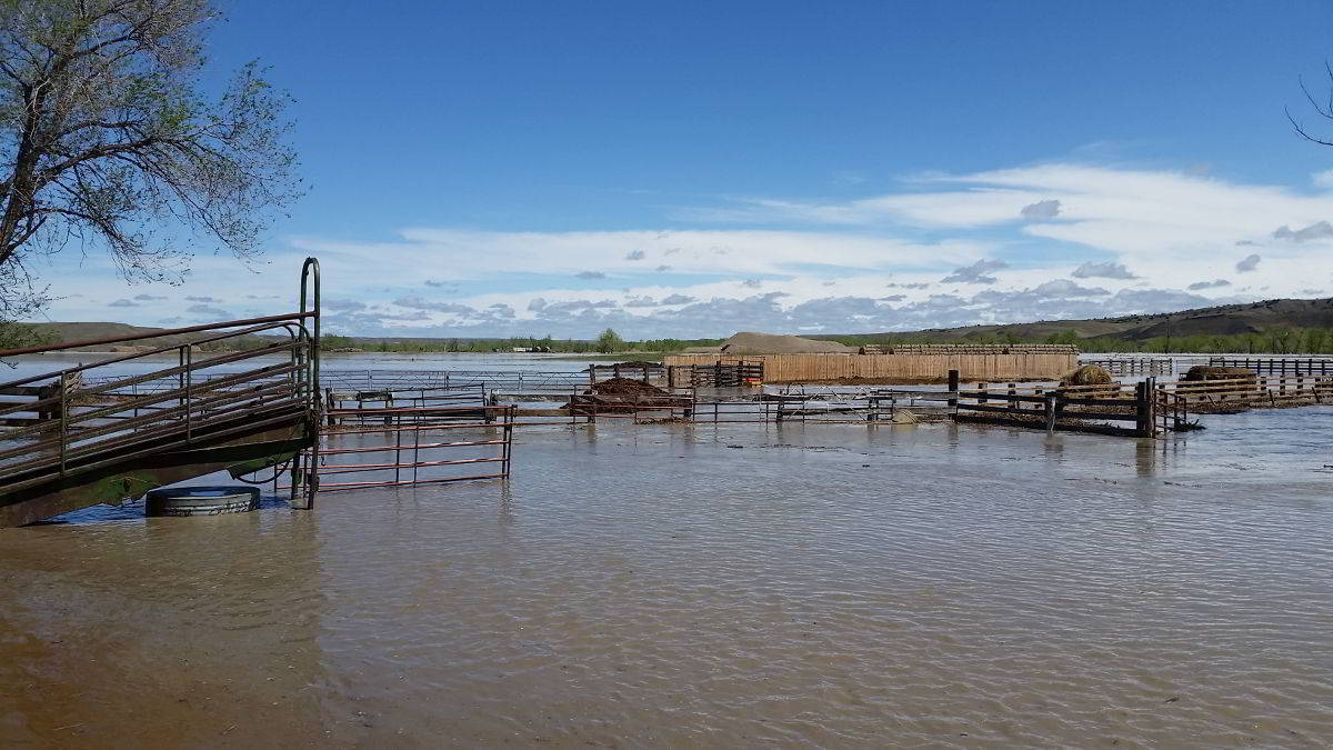 2015 Cheyenne River flood near Wasta South Dakota